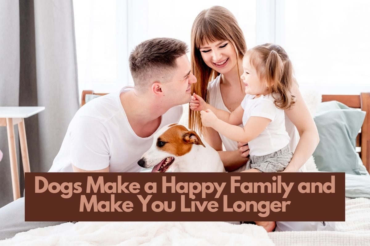 Dogs Make a Happy Family and Make You Live Longer