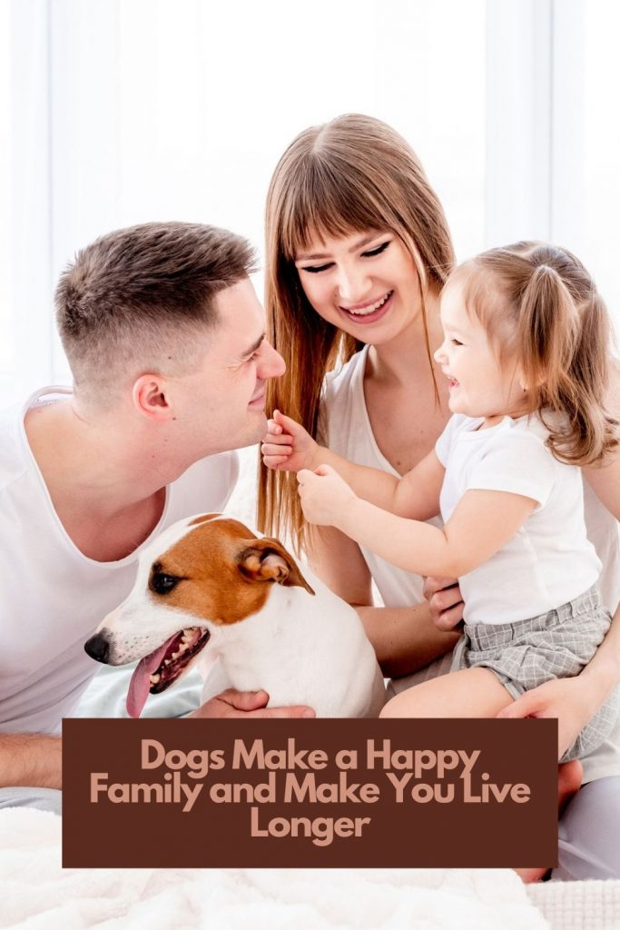 benefits-of-pet-dogs-pinterest